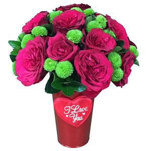 20 Red Roses in Bucket!