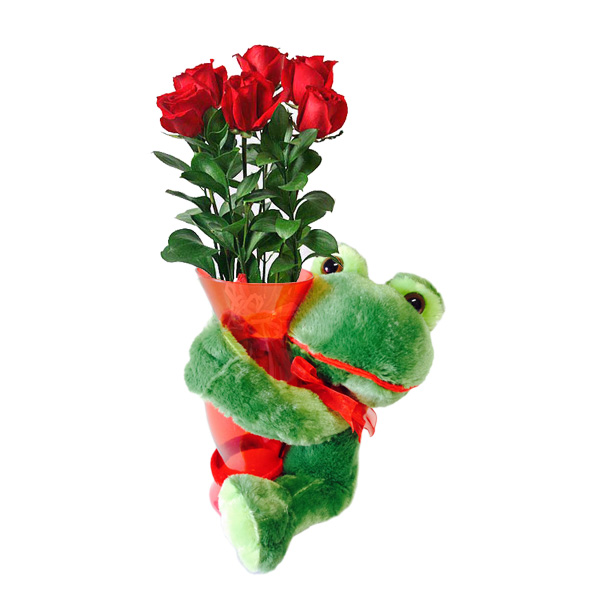 6 Red Roses with Froggy!